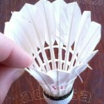 Fluturas de badminton (badminton shuttlecock)