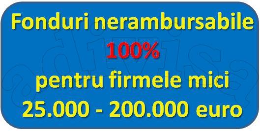 200.000 de euro nerambursabili 100%, pentru firmele mici