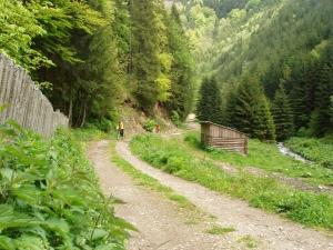 Valea Aușelu
